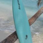 BuFo-Shortboard (Hydroflex) 6'5'' (Epoxy)