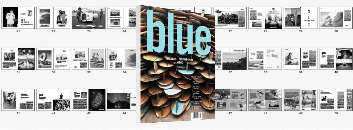 blue yearbook 2019